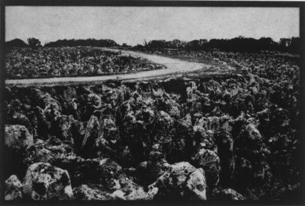 Nauru (road through mined area, Topside)