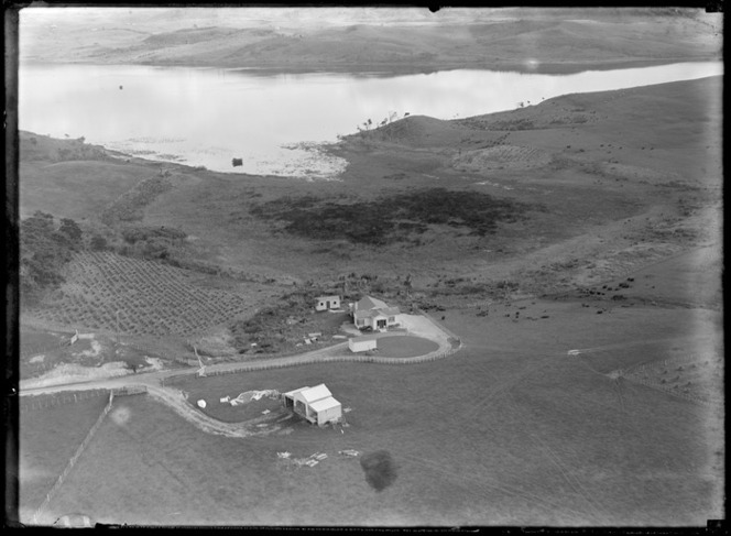 Lake Whangape, Waikato Region, featuring the residence of Doctor Pinfold; a farmhouse and outbuildings