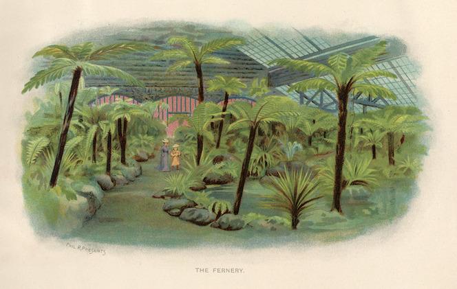 Presants, Philip Robert, 1867-1942 :The fernery. [1906]