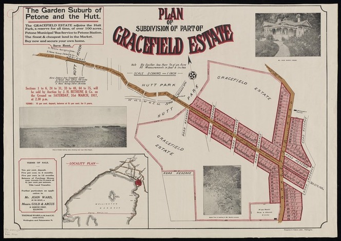 Plan of subdivision of part of Gracefield estate / [surveyed by] Thomas Ward.