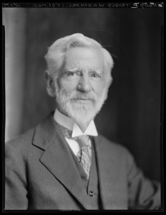 William Henry Triggs (1855-1934), member of the Legislative Council, and editor of the Christchurch Press. Photograph taken 1927 by S P Andrew Ltd of Wellington. Ref: 1/1-018933-F