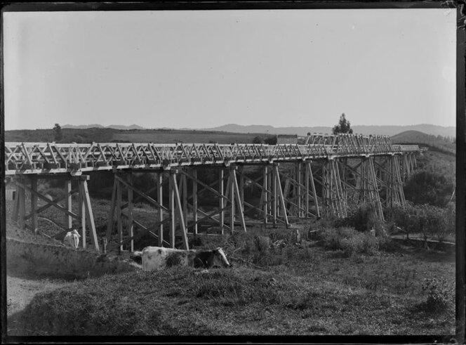Whatawhata Bridge, Waikato Region