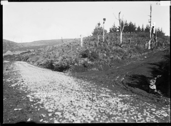 Junction of two roads, Te Mata, near Raglan, 1910 - Photograph taken by Gilmour Brothers