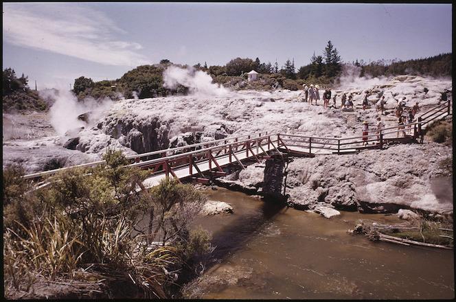 Silica thermal terraces, Whakarewarewa