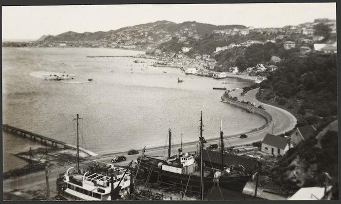 View of Evans Bay from above the Patent Slip