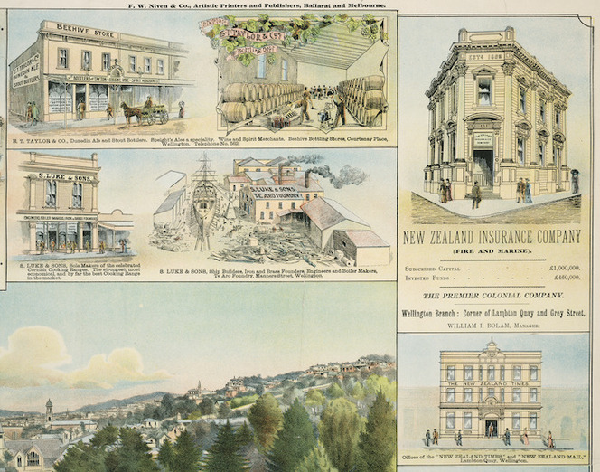 F W Niven & Co. :E T Taylor & Company; S Luke & Sons; New Zealand Insurance Company; Offices of the 'New Zealand Times' and the 'New Zealand Mail' [ca 1895]
