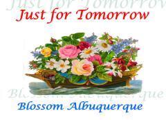 Just for tomorrow / Blossom Albuquerque.