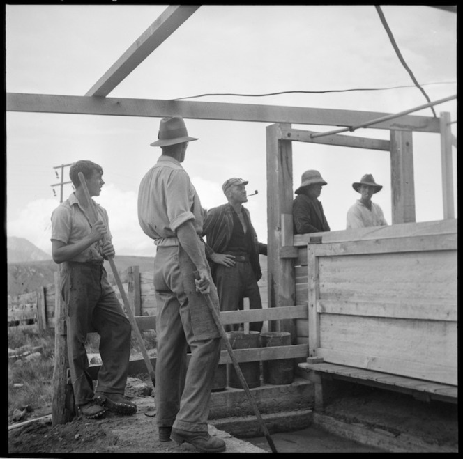 Men during sheep dipping, Grassmere Station, near Cass, Canterbury region
