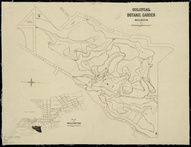 Colonial Botanic Garden, Wellington [cartographic material] / drawn by John Buchanan.