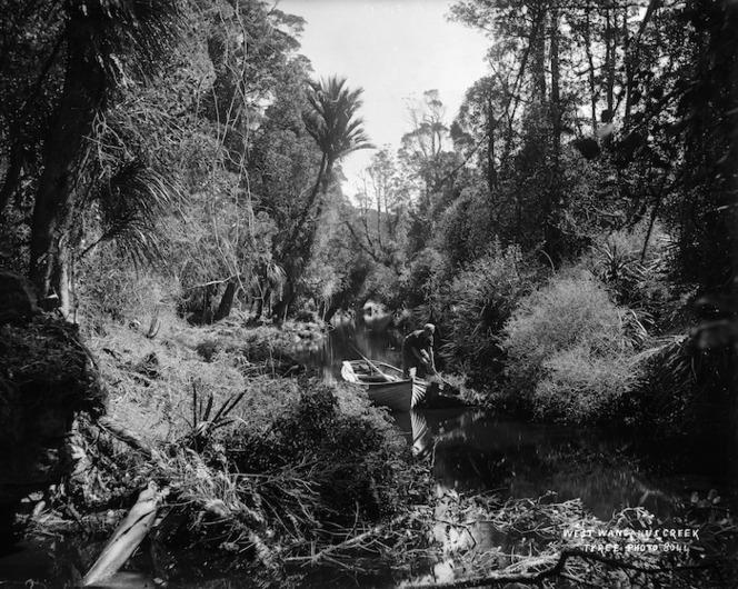Native bush, West Wanganui Creek and boat, Tasman district