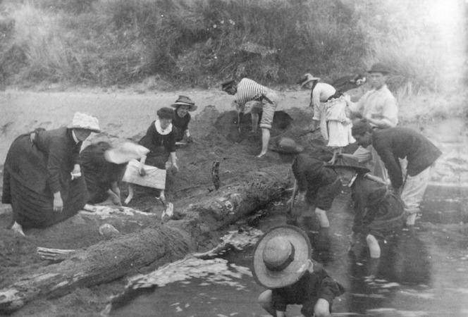 People playing in the sand, Totaranui