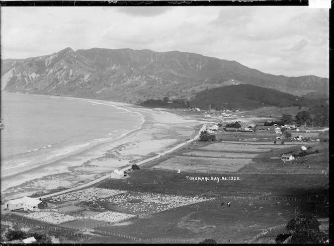 View of Tokomaru Bay looking south
