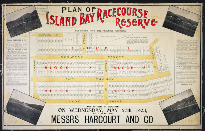 Plan of Island Bay, Racecourse Reserve [cartographic material] : subdivided into 253 building sections.