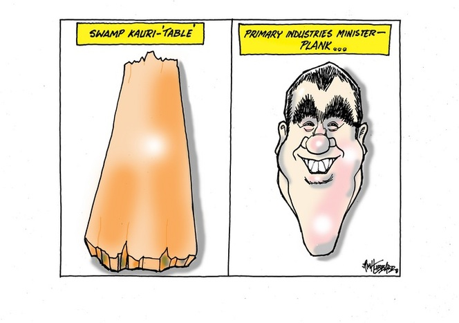 Swamp Kauri-'table'. Primary Industries Minister - Plank