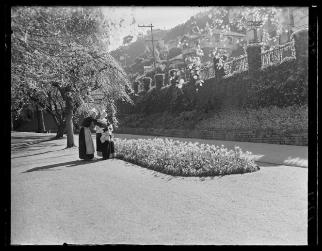 Dutch people looking at tulips in the Wellington Botanic Garden