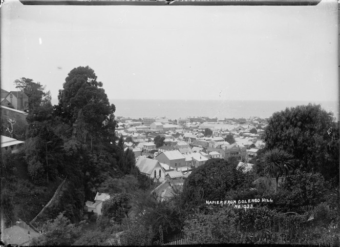 View of Napier from Colenso Hill