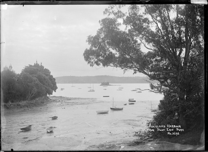 View of Auckland Harbour and Watchman Island from Point Erin Park