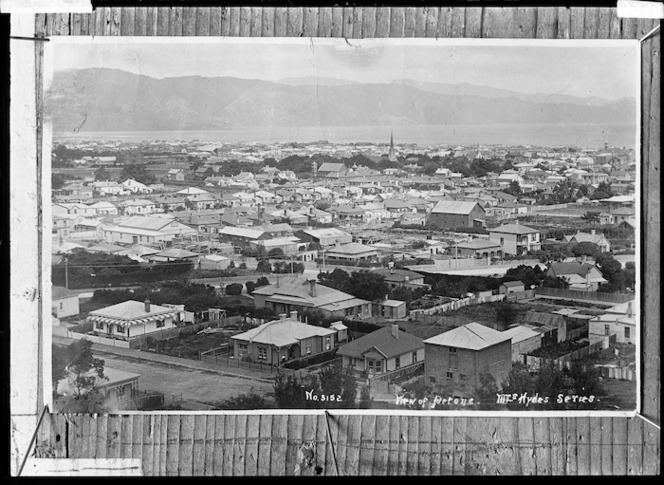 Petone from the Western Hills looking south