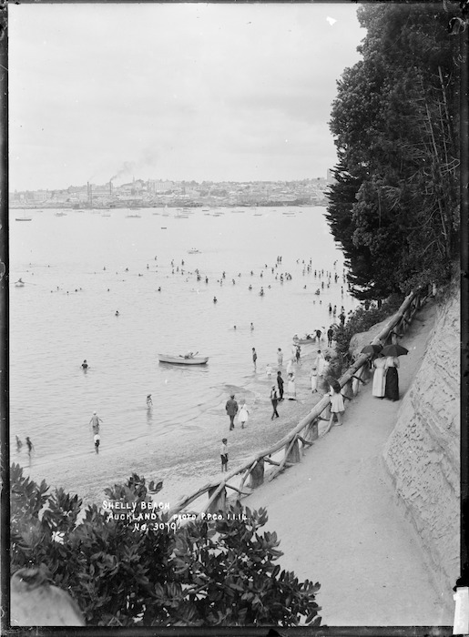 Shelly Beach from Point Erin Park, Auckland