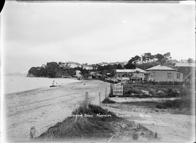 Girls with dogs on Sulphur Beach, Northcote, Auckland
