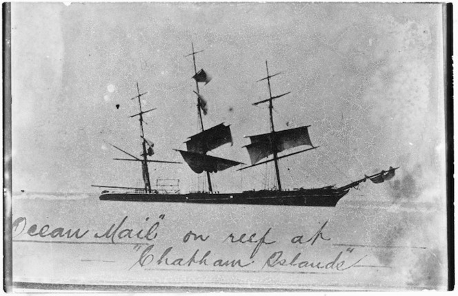 Ocean Mail on reef at Chatham Islands