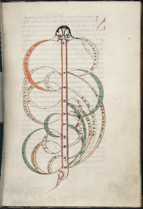 Zoomorphic diagram