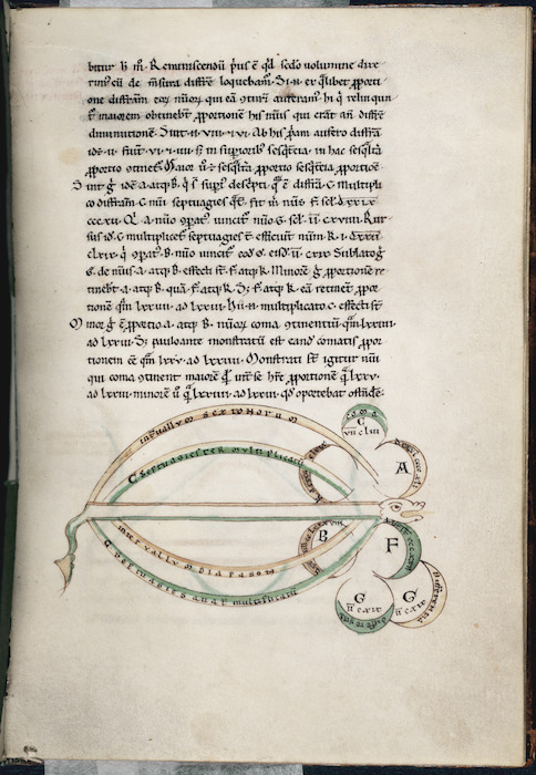 Text with zoomorphic diagram - Serpent