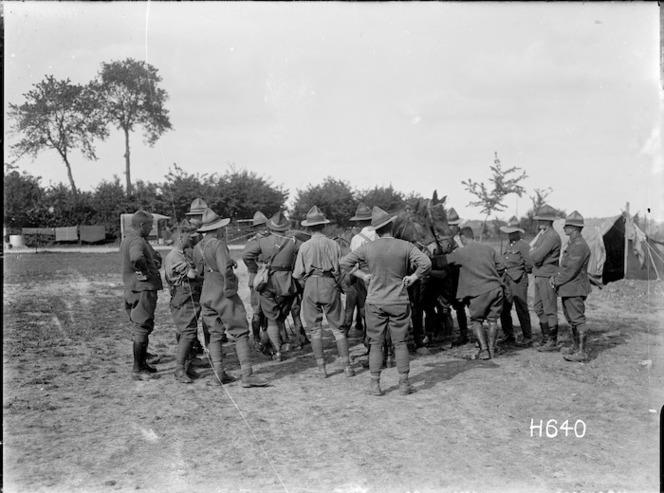 New Zealand soldiers with German horses, World War I