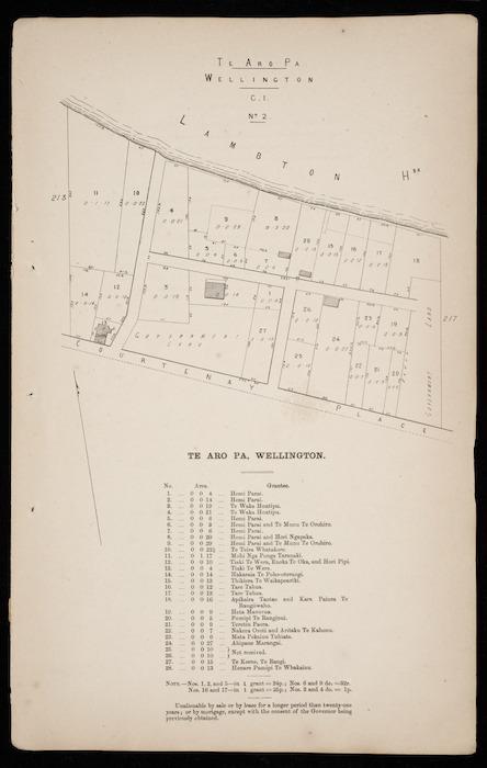 Te Aro Pa, Wellington [cartographic material].