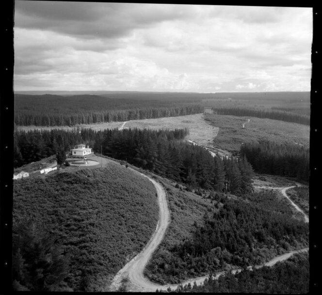 Kaingaroa Forest