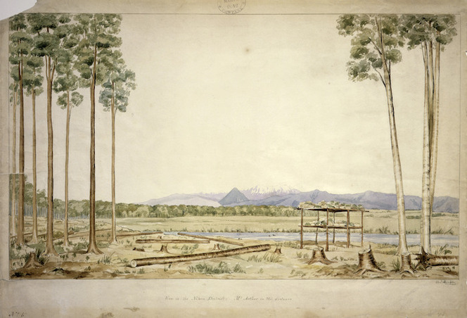 Heaphy, Charles 1820-1881 :View in the Nelson district; Mt. Arthur in the distance no. 6 [1841]