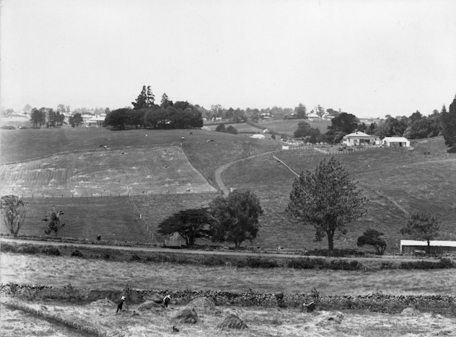 Winkelmann, Henry 1860-1931 :View from the Ranfurly Veterans' Home, in Mount Roskill, Auckland