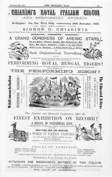 Chiarini's Royal Italian Circus and Performing Animals. Wellington, for one week only, commencing 26th November, 1879. ... A grand congress of arenic stars! Performing Royal Bengal tigers! The performing bison! This powerful and mammoth combination offers the finest exhibition on record! A school of performing dogs ... New Zealand Mail, November 29, 1879, [page] 3.