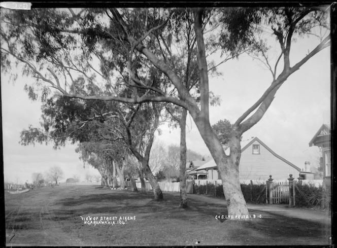 Aikens Street, Ngaruawahia, 1910 - Photograph taken by G & C Ltd