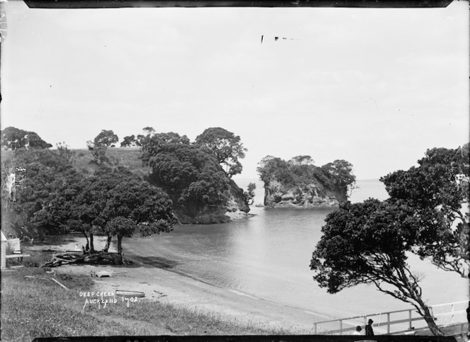View of Waiake Beach, Torbay, Auckland