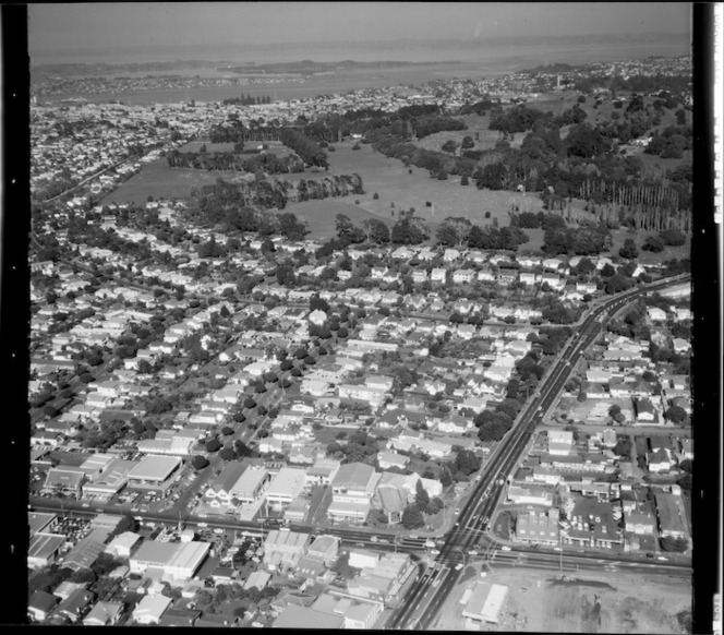 View of Greelane and Cornwall Park, Auckland, New Zealand