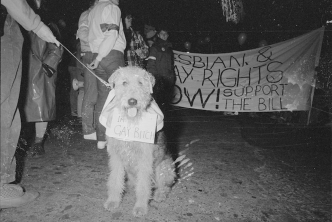 March in support of homosexual law reform, shows a dog with sign around its neck that reads 'I'm a gay bitch'. Ref: Dom/1985/0524/1/12A-F