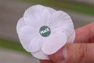 Image: Anger at white poppies for Anzac Day