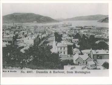Image: Dunedin Otago Harbour, from Mornington