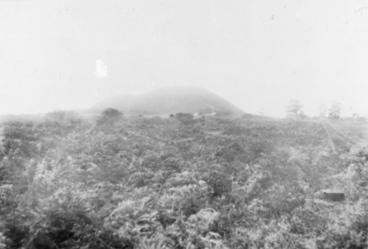 Image: Maungarei Pa, western slopes