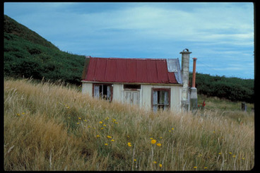 Image: [A small bach in a grassy field].