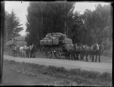 Image: Horse drawn wagons carrying bales of wool pulled by Clydesdale horses, Hawke's Bay District
