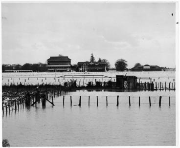 Image: Makaraka Racecourse under flood waters