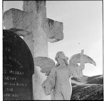 Image: Tombstones at Karori Cemetery, Wellington