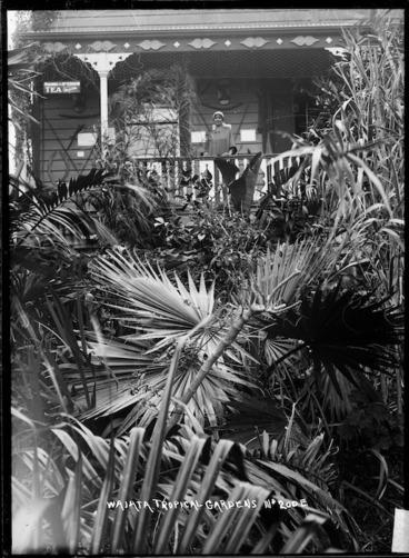 Image: Waiata Tropical Gardens, Birkenhead, Auckland