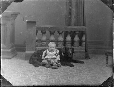 Image: Unidentified infant and large dog