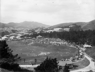 Image: Overlooking Newtown Park, Newtown, Wellington