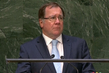 Image: McCully: Security Council 'largely impotent'