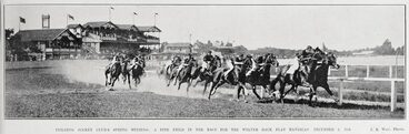 Image: FEILDING JOCKEY CLUB'S SPRING MEETING: A FINE FIELD IN THE RACE FOR THE WELTER HACK FLAT HANDICAP, DECEMBER 1, 1908.