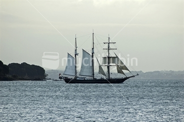 Image: Sailing ship on Waitemata Harbour, New Zealand